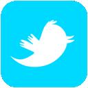 icon twiter